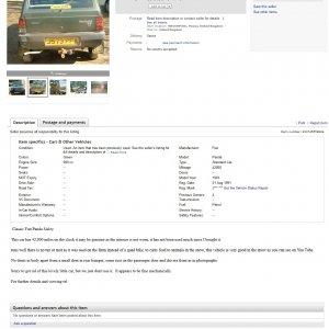 ebay_listing_screenshot.jpg
