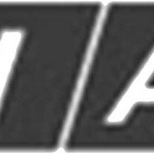 FIAT11.jpg
