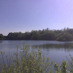 longton_panoramic_south_small.jpg