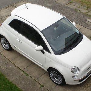 white500.jpg