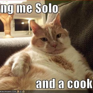 funny-pictures-orange-jabba-cat.jpg